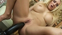 Ass to Mouth Gaping & Toys Tease