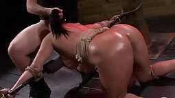 Slave cocksucking with whore husband